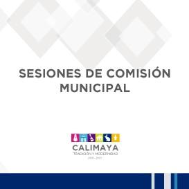 Sesiones de comision municipal